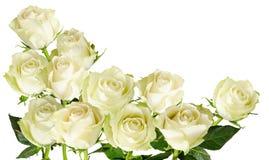 与在白色背景隔绝的白玫瑰花束的美好的水平的框架  免版税库存照片