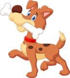 与在白色背景隔绝的骨头的动画片滑稽的狗 库存图片