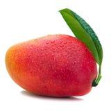 与在白色背景隔绝的绿色叶子的新鲜的芒果果子 图库摄影