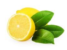 与在白色隔绝的叶子的柠檬 库存照片
