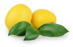 与在白色隔绝的叶子的柠檬 库存图片