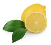 与在白色隔绝的叶子的柠檬 图库摄影