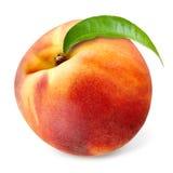 与在白色隔绝的叶子的桃子 免版税库存图片