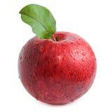与在白色隔绝的叶子的红色苹果 库存图片