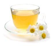 与在白色隔绝的春黄菊花的甘菊茶 免版税图库摄影