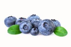 与在白色隔绝的绿色叶子的蓝莓 免版税图库摄影