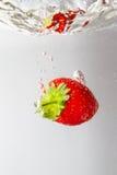 与在白色隔绝的水飞溅的新鲜的草莓 库存照片