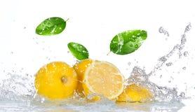 与水飞溅的柠檬 免版税图库摄影