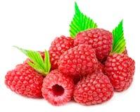 与在白色ba隔绝的绿色叶子的可口新鲜的莓 免版税库存图片