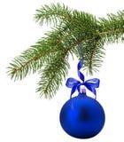 与在白色backg隔绝的蓝色球的圣诞树分支 库存图片