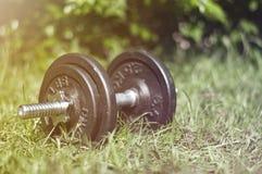 与在自然健身房的哑铃 免版税图库摄影