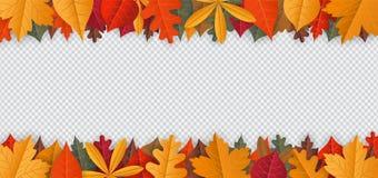 与在透明背景隔绝的下落的叶子的秋天背景 库存照片
