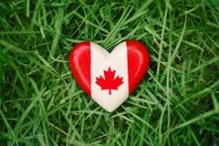 与在绿色森林自然背景的草的红色白色加拿大旗子枫叶的小心脏外面,加拿大天 图库摄影