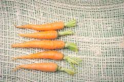 与在a整洁地安置的绿色的五棵新鲜的红萝卜 库存照片