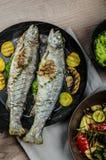 与地中海菜的烤鳟鱼 图库摄影