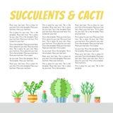 与地方的多汁植物和仙人掌平的样式多彩多姿的传染媒介背景您的文本的 Minimalistic设计 第一部分 免版税图库摄影