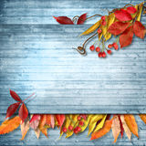 与地方的秋天葡萄酒花卉背景您的文本的 免版税图库摄影