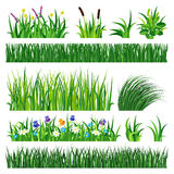 与地球传染媒介例证的草 向量例证