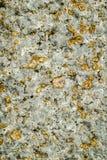 与地衣的老花岗岩石头 免版税库存图片