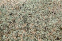 与地衣的花岗岩岩石 库存图片