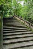 与地衣隐蔽的楼梯栏杆的遮荫古老石楼梯在w 库存图片