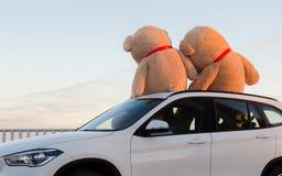 与坐在汽车敞篷顶部的红色丝带的巨型玩具熊室外 文本的空间 爱,情人节概念 免版税库存照片