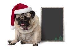 与坐在空白的黑板标志旁边的红色圣诞老人帽子的脾气坏的圣诞节哈巴狗小狗 库存图片