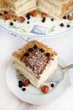 与坚果和巧克力的夹心蛋糕 免版税库存图片