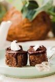 与坚果和椰子,健康素食主义者点心的未加工的巧克力糖 免版税库存图片