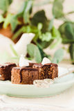 与坚果和椰子,健康素食主义者点心的未加工的巧克力糖 免版税库存照片