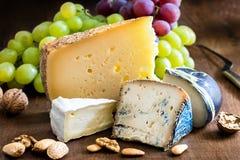 与坚果和葡萄的开胃乳酪品种 免版税库存图片