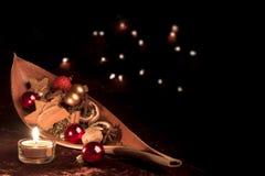 与坚果壳的圣诞节装饰 免版税库存照片