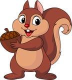 与坚果的灰鼠动画片 免版税库存照片