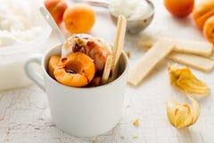 与坚果的鲜美新鲜的冷的开胃香草冰淇淋,杏子 库存照片