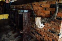 与垂悬在砖墙上的垫铁的头骨母牛 公牛角和头骨 顶头公牛 免版税库存图片