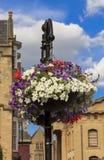 与垂悬从装饰灯笼的五颜六色的花的花盆 免版税图库摄影