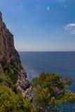 与垂直的岩石的海岸线 免版税图库摄影