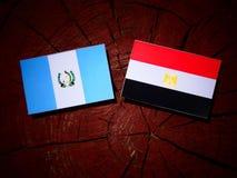 与埃及旗子的危地马拉旗子在树桩 库存图片