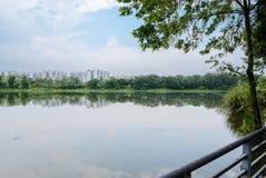 与城市的湖边扶手栏杆在背景中在多云夏日 库存图片