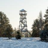 与城楼的美好的多雪的冬天风景在森林里 免版税库存图片