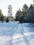 与城楼的美好的多雪的冬天风景在森林里 库存图片