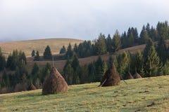 与堆的农村风景在山的领域的干燥干草 免版税库存照片