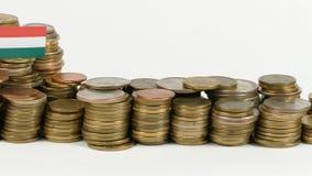与堆的匈牙利旗子金钱硬币 股票视频