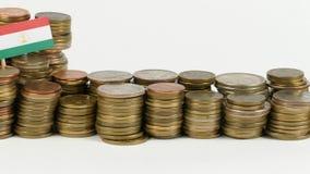 与堆的塔吉克斯坦旗子金钱硬币 股票视频