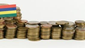 与堆的毛里求斯旗子金钱硬币 影视素材