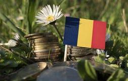 与堆的罗马尼亚旗子金钱铸造与草 免版税库存图片