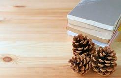 与堆的自然杉木锥体在浅褐色的木桌上的书 免版税库存图片