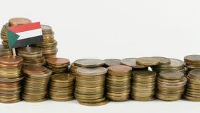 与堆的苏丹旗子金钱硬币 影视素材