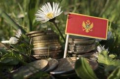 与堆的门的内哥罗的旗子金钱铸造与草 免版税库存图片