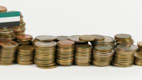 与堆的阿联酋旗子金钱硬币 股票录像